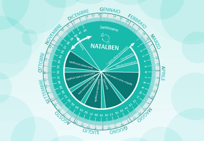 Calendario Della Gravidanza Calcolo.Ruota Della Gravidanza Settimana Per Settimana